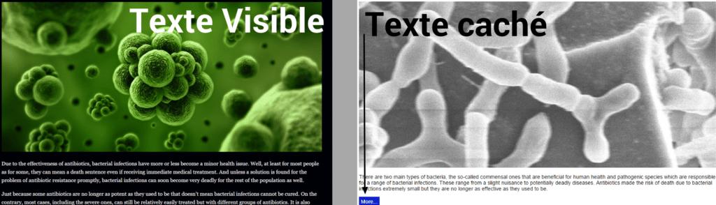 texte visible et texte caché google